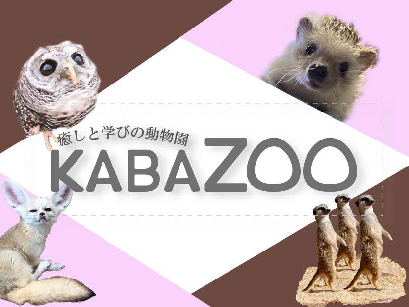 KABAZOO